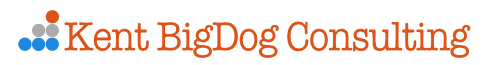 BigDog eCommerce Consulting